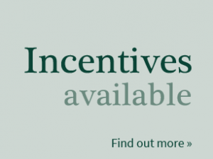widget-incentives-available